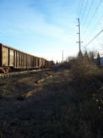 Work Train